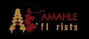 AF logo T-01.png